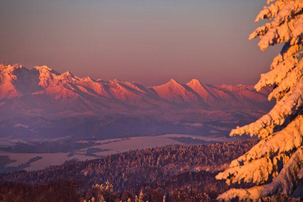Fotoobraz – Na Jaworzynie Krynickiej zimą #4 #04296