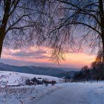 Fotoobraz – Na Ogrodach Zmysłów w Muszynie zimą #2 #05692