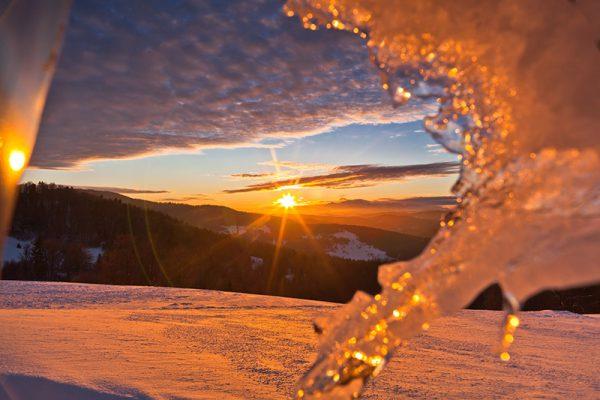 Fotoobraz – Bacówka nad Wierchomlą i okolice zimą #12956