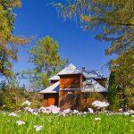 Fotoobrazy – Wiosenna Muszyna – Zapopradzie #04447