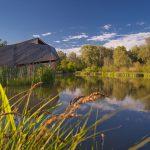 Fotoobraz – Wiosenne Bobrowisko w Starym Sączu #17543