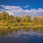 Fotoobraz – Wiosenne Bobrowisko w Starym Sączu #17551