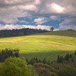 Fotoobrazy – Wzgórza nad Andrzejówką #17737
